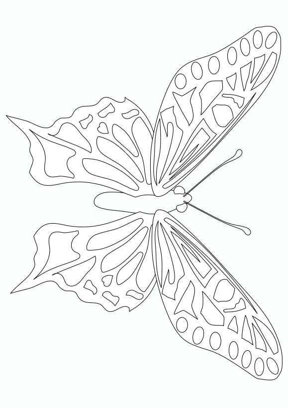 Butterfly2 Free coloring page for kids