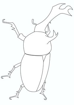 Real beetle Coloring Pages for kids