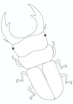 Stag Coloring Pages for kids