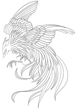 Premium8 Bird free coloring pages for kids