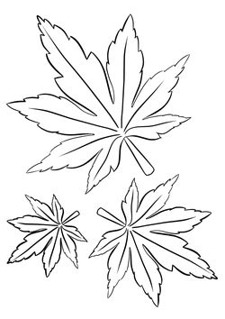 Momiji maple free coloring pages for kids