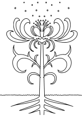 Flower19 free coloring pages for kids