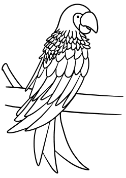 Parrot free coloring pages for kids