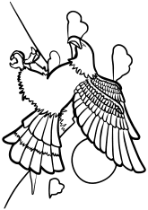 Eagle free coloring pages for kids