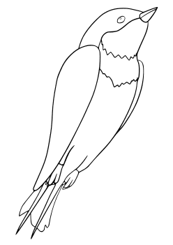 Swallow Coloring Pages for kids